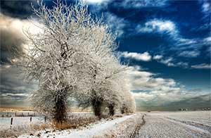 Balade des 4 saisons – Dimanche 11 décembre
